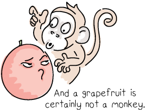 Grapefruit Monkey